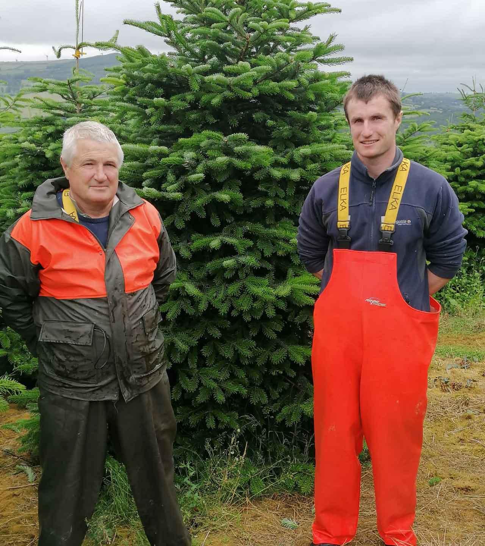 Ballykelly Christmas Trees